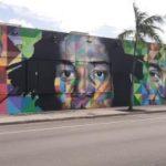 kobra streetart wynwood